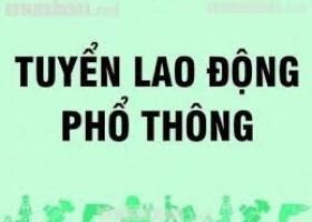 TUYỂN DỤNG LAO ĐỘNG